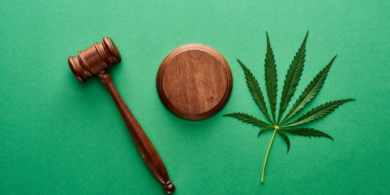 top-view-of-green-marijuana-leaf-with-wooden-gavel-GYVX475